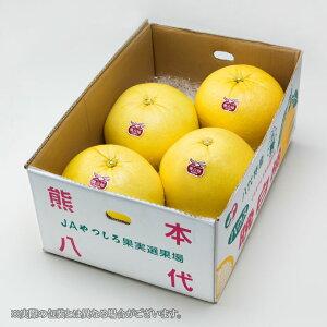 晩白柚 ばんぺいゆ  熊本県産 JAやつしろ 秀品 Lサイズ 6玉 約10kg  送料無料 ギフト  柑橘 蜜柑 みかん