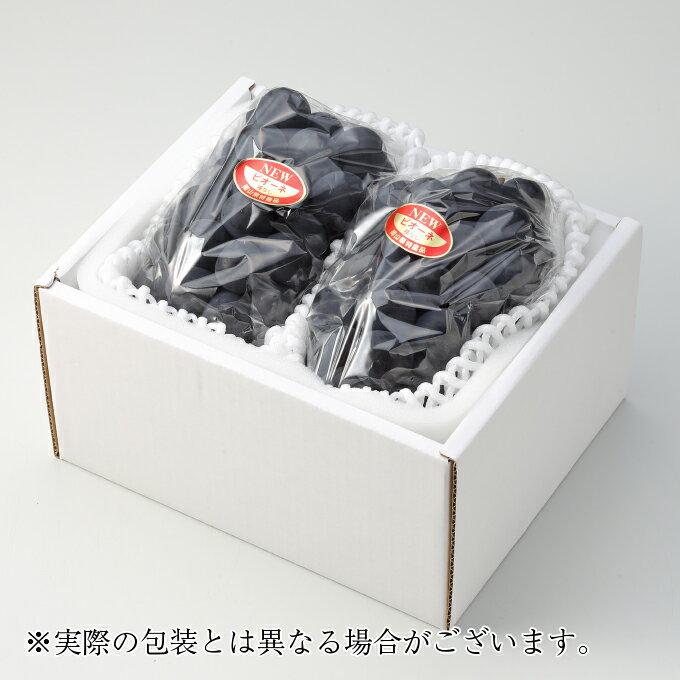 父の日ギフト ニューピオーネ 岡山県産 JA岡山 赤秀 2房 約500g×2 送料無料 ピオーネ 葡萄 ブドウ ぶどう