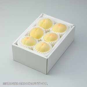 父の日ギフト 岡山県産 白桃 岡山の白桃 エース 4〜7玉 約1kg 送料無料 白桃 はくとう 桃 もも モモ