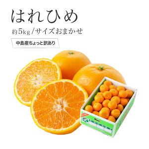 はれひめ 愛媛県中島産 風のいたずら ちょっと訳あり 大きさおまかせ 約5kg 送料無料 お歳暮 冬ギフト 蜜柑 ミカン みかん