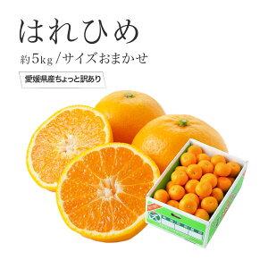 はれひめ 愛媛県産 かぜのいたずら ちょっと訳あり 大きさおまかせ 約5kg 送料無料 お歳暮 冬ギフト 蜜柑 ミカン みかん