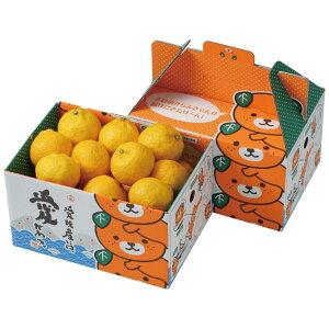 みかん はるか 赤秀 2L〜M 2.5kg 愛媛県 中島産 柑橘 ミカン バレンタイン ギフト 贈り物