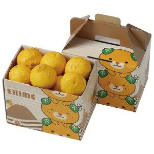 みかん はるか 赤秀 2L〜M 1.5kg 愛媛県 中島産 柑橘 ミカン バレンタイン ギフト 贈り物