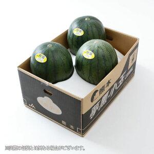 すいか 夢黒小玉すいか 熊本県産 JA鹿本 秀品 3Lサイズ 3玉入り 約7.5kg 送料無料 スイカ 西瓜 お中元 夏ギフト