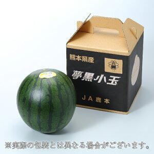 すいか 夢黒小玉すいか 熊本県産 JA鹿本 秀品 3Lサイズ 1玉入り 約2.5kg 送料無料 お中元 スイカ 西瓜