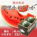 夢黒小玉すいか 熊本県産 JA鹿本 ちょっと訳あり 4Lサイズ 2玉 約6.0kg 送料無料 スイカ 西瓜