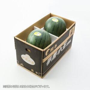 すいか 夢黒小玉すいか 熊本県産 JA鹿本 ちょっと訳あり 4Lサイズ 2玉 約6.0kg 送料無料 スイカ 西瓜 お中元 夏ギフト