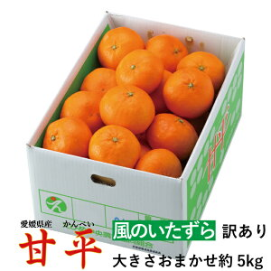 みかん 甘平 かんぺい 愛媛県産 風のいたずら ちょっと訳あり 家庭用 大きさおまかせ 約5kg 送料無料 カンペイ 蜜柑 ミカン バレンタイン ギフト 贈り物