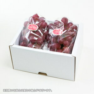 マスカット ビオレ 岡山県産 秀品 大粒 400g×2房 化粧箱入り ギフト 葡萄 ぶどう ブドウ