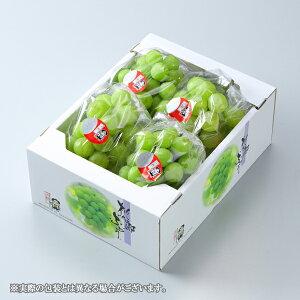 ぶどう 桃太郎ぶどう 青秀 3〜5房 約2kg 送料無料 岡山県産 香川県産 お中元 葡萄 ブドウ
