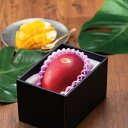 マンゴー 宮崎県産 完熟マンゴー 風のいたずら  ちょっと訳あり  4Lサイズ  1玉  送料無料