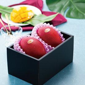 みやざき完熟マンゴー JA宮崎経済連 赤秀 2Lサイズ 350g以上×2玉 送料無料 マンゴー 宮崎県産