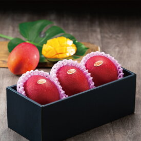 マンゴー みやざき完熟マンゴー 赤秀 4Lサイズ 510g以上×3玉 宮崎県産 JA宮崎経済連 ギフト お取り寄せグルメ