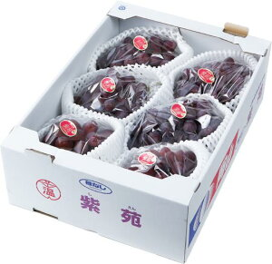 ぶどう 紫苑 しえん 青秀 4〜8房 4kg 岡山県産 JAおかやま 葡萄 ブドウ