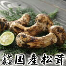 松茸 まつたけ 国産 国産松茸 日本産 産地厳選 秀品 つぼみ〜ひらき 大きさお任せ 約100g まつたけ