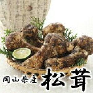 松茸 国産 岡山県産 秀品 上物 つぼみ 大きさお任せ 約200g  送料無料 松茸 マツタケ まつたけ
