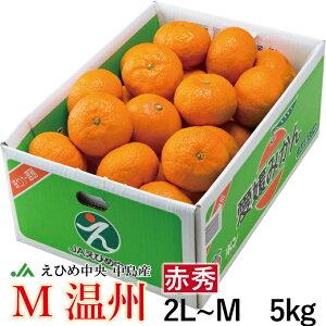 みかん М温州 秘蔵の越冬完熟みかん 赤秀 2L〜M 5kg JAえひめ中央 中島産 蜜柑 ミカン