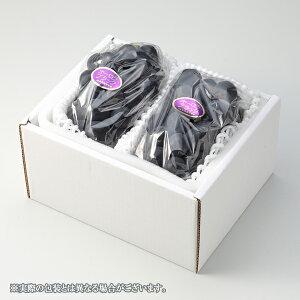 オーロラブラック 岡山県産 JAおかやま 赤秀 大粒  約600g×2房 送料無料 葡萄 ぶどう ブドウ