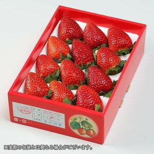 おいCベリー 岡山県産 いちご  大粒 3L〜4L 12〜15粒  約450g  化粧箱入り 送料無料 苺 贈り物 ギフト