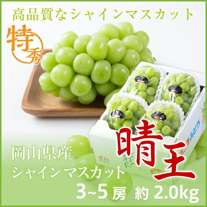 シャインマスカット  晴王  岡山県産 JAおかやま 特秀品 3〜5房 約2kg  送料無料 ぶどう 葡萄 ブドウ
