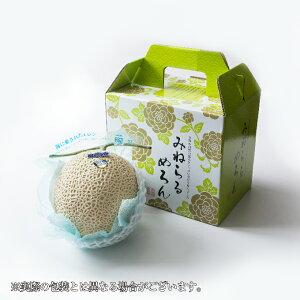 メロン プリンセスニーナ 高知県産 JA高知県 秀品 約1.2kg×1玉 ギフト お取り寄せグルメ