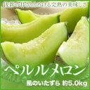 【送料無料】 JA岡山(せとうち産)  『ペルルメロン』 風のいたずら(ちょっとわけあり)  5L〜Lサイズ 2玉〜6玉入 …