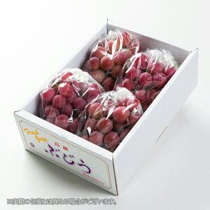 クイーンニーナ  岡山県産 JAおかやま 青秀 3〜5房 約2kg 送料無料 ぶどう 葡萄 ブドウ