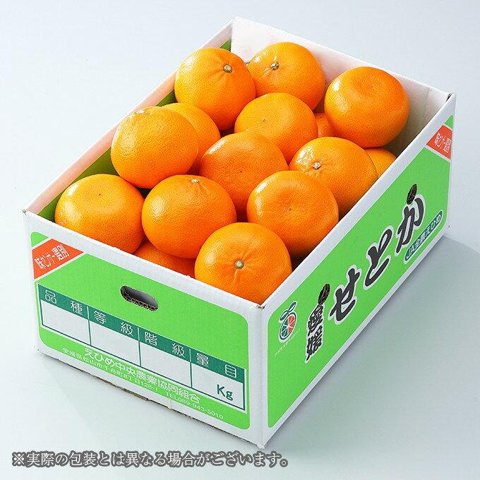 せとか  愛媛県 中島産 風のいたずら ちょっと訳あり 大きさおまかせ  約3kg 送料無料  みかん ギフト 贈り物