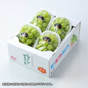 シャインマスカット  晴王  岡山県産 JAおかやま 赤秀 3〜5房 約2kg ギフト  送料無料 ぶどう 葡萄 ブドウ