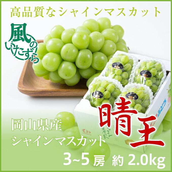 シャインマスカット晴王 岡山県産 風のいたずら(ちょっと訳あり) 3〜5房 約2kg  送料無料 ぶどう 葡萄 ブドウ