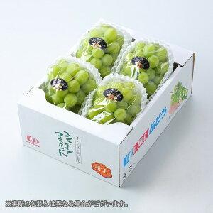 シャインマスカット  晴王  岡山県産 JAおかやま 優品 3〜5房 約2kg ギフト 送料無料 ぶどう 葡萄 ブドウ