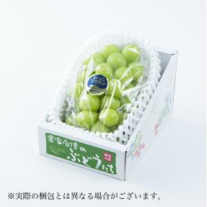 シャインマスカット岡山県産 特秀 大粒 1房 約700g 送料無料 蒲萄 ぶどう ブドウ