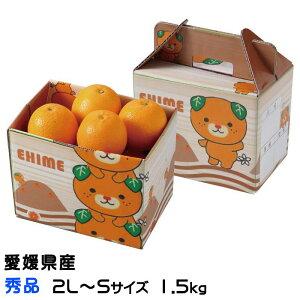 みかん ブラッドオレンジ タロッコオレンジ みきゃん箱入り 秀品 2L〜Mサイズ 約2.5kg 愛媛県 中島産 送料無料 ミカン 蜜柑 ギフト 贈り物