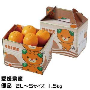 みかん ブラッドオレンジ タロッコオレンジ 優品 2L〜Mサイズ 約5kg 愛媛県 中島産 送料無料 ミカン 蜜柑 ギフト 贈り物