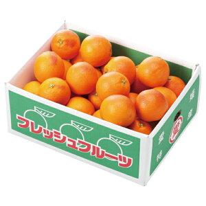 みかん タロッコオレンジ ブラッドオレンジ 風のいたずら 訳あり 大きさおまかせ 5kg 愛媛県 中島産 ミカン 蜜柑