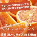 【送料無料】愛媛県(中島産)『ブラッドオレンジ』 タロッコオレンジ 青秀 3L〜Lサイズ(約1.5kg)