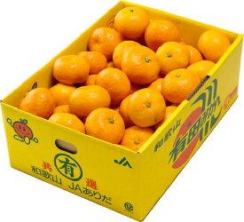 みかん 温州みかん 産地厳選 風のいたずら ちょっと訳あり 大きさおまかせ 2.5kg 蜜柑 ミカン ギフト
