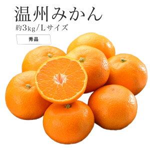 温州みかん 産地厳選 秀品 Lサイズ 約3kg 送料無料 みかん 蜜柑 ミカン