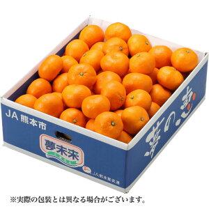みかん 夢の恵 プレミアムみかん JA熊本市 赤秀 L〜Sサイズ 約5kg 送料無料 蜜柑 ミカン ギフト 正月