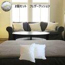 【2個セット】 羽根(フェザー)ヌードクッション中材 無地 50×50cm 日本製