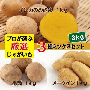 厳選じゃがいも3種詰め合わせ/合計3kg インカのめざめ 男爵イモ メークイン 詰め合わせセット ミックス 芋/イモ