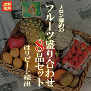 厳選フルーツ盛り合わせ 8品 ご自宅用 【メロン 確約】果物 フルーツセット 果物セット 送料無料 旬 お取り寄せ スムージーにも 母の日
