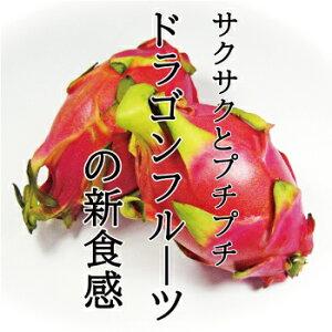 ドラゴンフルーツ 1個 約300g 珍しい インスタ映え