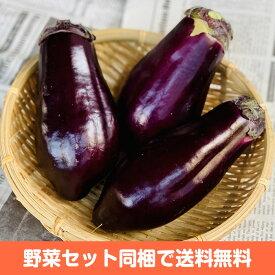 大阪 泉州 水なす【水茄子 水ナス お取り寄せ 単品 野菜 国内産 日本産 国産 新鮮 みずみずしい 糠漬け ぬか漬け 生食】