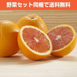 ブラッドオレンジ 1個【ジュース カクテル お取り寄せ 単品 野菜 フルーツ 果物 ビタミン】