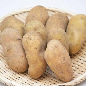 メークイン L〜2Lサイズ 1ケース(10kg)【国内産 日本産 じゃがいも ジャガイモ じゃが芋 箱売り 常備野菜に まとめ買い 備蓄】