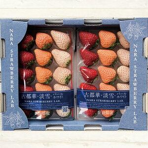 ブランド 3色いちご(古都華・淡雪・パールホワイト)1ケース(2パック入り)【イチゴ 苺 奈良いちごラボ お土産 贈り物 贈答品 ご褒美 ごほうび プレゼント 手土産 フルーツ 果物 インスタ