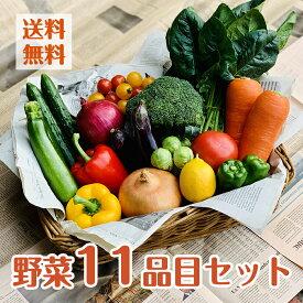 【目利きのプロが厳選した】使いやすい定番野菜 おまかせ11品セット 苦手な野菜は入れません!単品商品も同梱可能!旬/新鮮/安心/安全/野菜セット/詰め合わせ