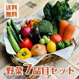 【目利きのプロが厳選した】使いやすい定番野菜 おまかせ7品セット 苦手な野菜は入れません!単品商品も同梱可能!/7品以上保証/おまかせ/定番野菜/野菜セット/詰め合わせ