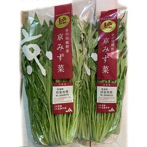 京水菜 1パック 【京野菜 水菜 みずな ミズナ お取り寄せ 単品 野菜 国産 日本産 国内産 新鮮】